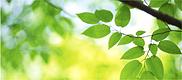 Обновление раздела «Объекты размещения отходов»